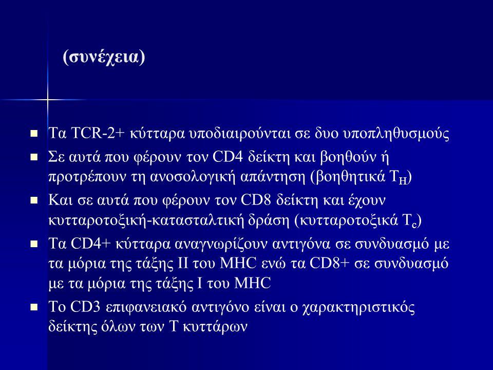 (συνέχεια) Τα TCR-2+ κύτταρα υποδιαιρούνται σε δυο υποπληθυσμούς