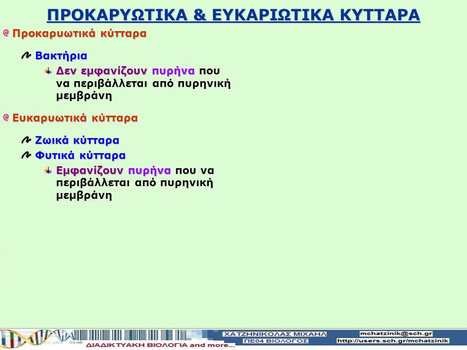 ΠΡΟΚΑΡΥΩΤΙΚΑ & ΕΥΚΑΡΙΩΤΙΚΑ ΚΥΤΤΑΡΑ