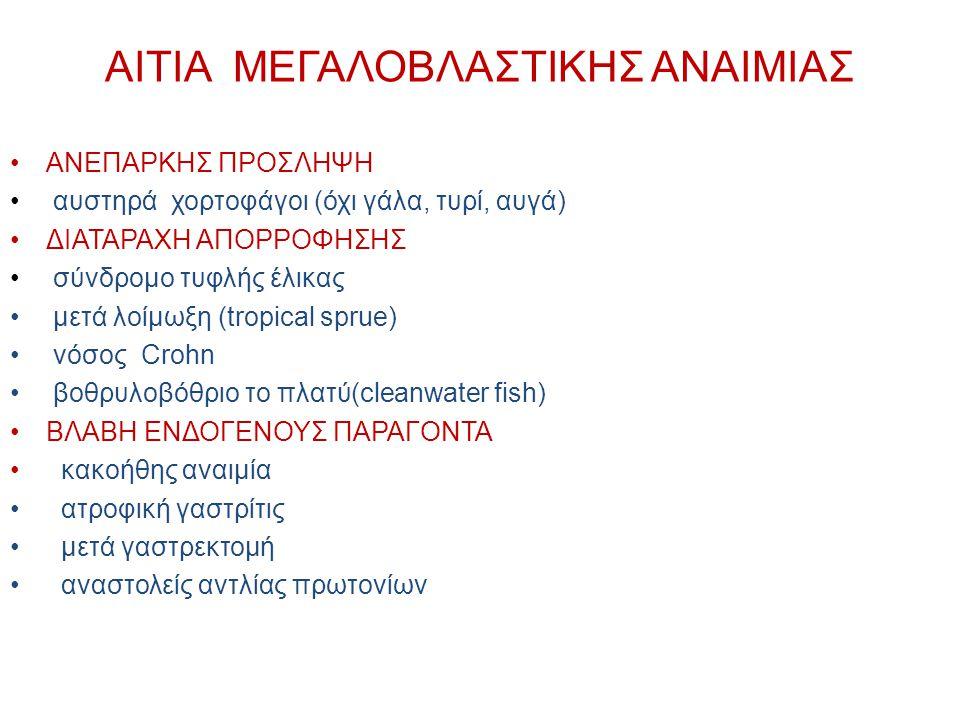 ΑΙΤΙΑ ΜΕΓΑΛΟΒΛΑΣΤΙΚΗΣ ΑΝΑΙΜΙΑΣ
