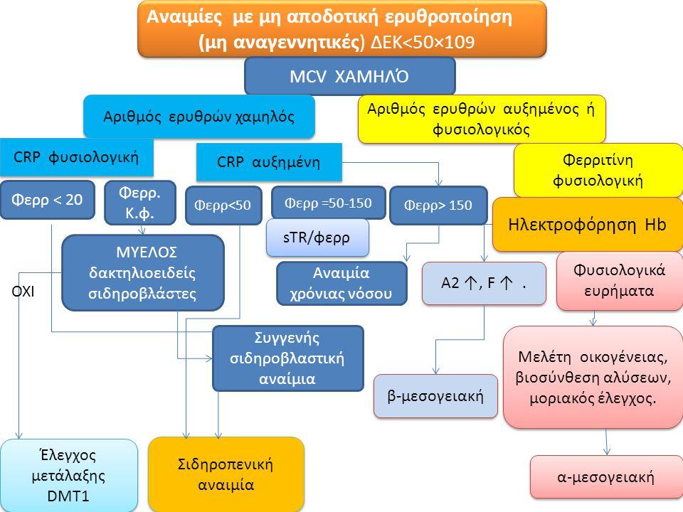 Αναιμίες με μη αποδοτική ερυθροποίηση (μη αναγεννητικές) ΔΕΚ<50×109