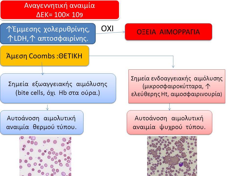 ΟΧΙ Αναγεννητική αναιμία ΔΕΚ= 100× 109