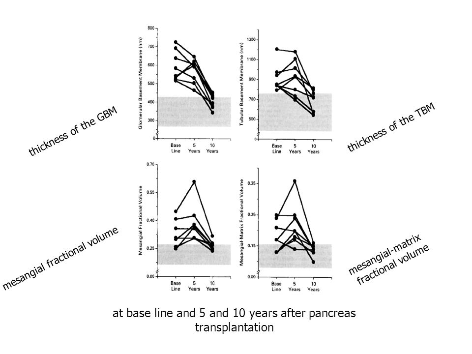 at base line and 5 and 10 years after pancreas transplantation