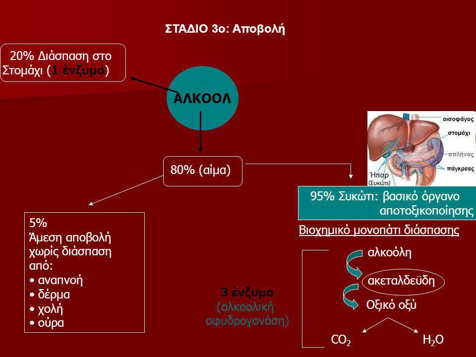 ΑΛΚΟΟΛ ΣΤΑΔΙΟ 3ο: Αποβολή 20% Διάσπαση στο Στομάχι (1 ένζυμο)