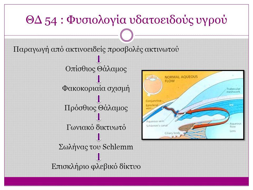 ΘΔ 54 : Φυσιολογία υδατοειδούς υγρού