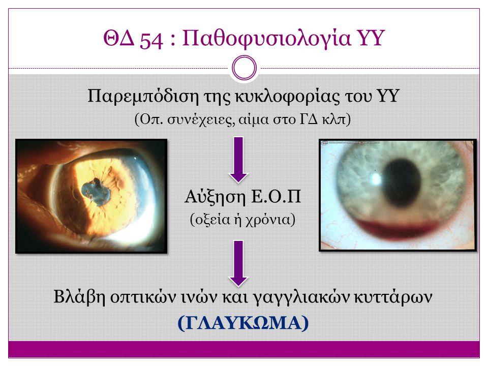 ΘΔ 54 : Παθοφυσιολογία ΥΥ Παρεμπόδιση της κυκλοφορίας του ΥΥ