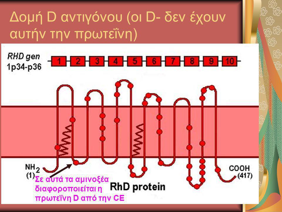 Δομή D αντιγόνου (οι D- δεν έχουν αυτήν την πρωτεΐνη)