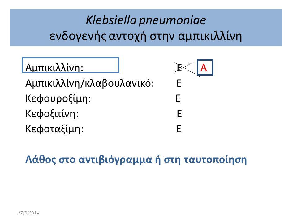 Klebsiella pneumoniae ενδογενής αντοχή στην αμπικιλλίνη