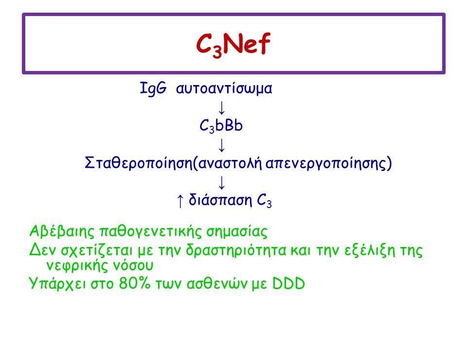 C3Nef