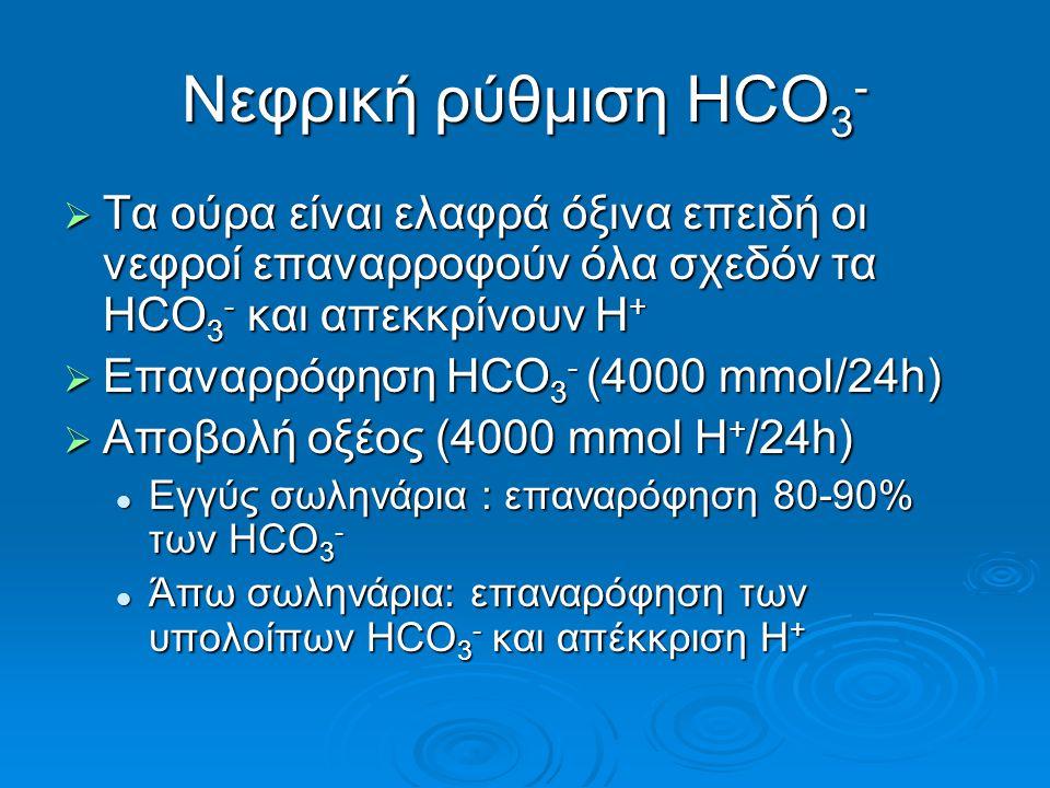 Νεφρική ρύθμιση HCO3- Τα ούρα είναι ελαφρά όξινα επειδή οι νεφροί επαναρροφούν όλα σχεδόν τα HCΟ3- και απεκκρίνουν H+
