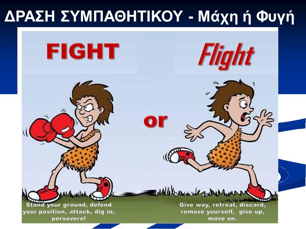 ΔΡΑΣΗ ΣΥΜΠΑΘΗΤΙΚΟΥ - Μάχη ή Φυγή