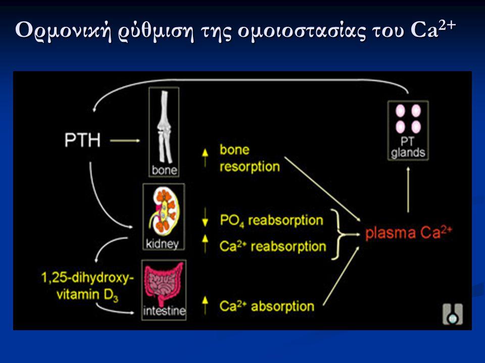 Ορμονική ρύθμιση της ομοιοστασίας του Ca2+