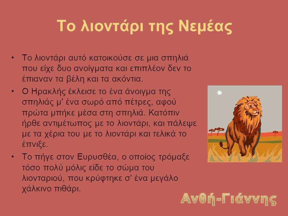 Το λιοντάρι της Νεμέας Ανθή-Γιάννης
