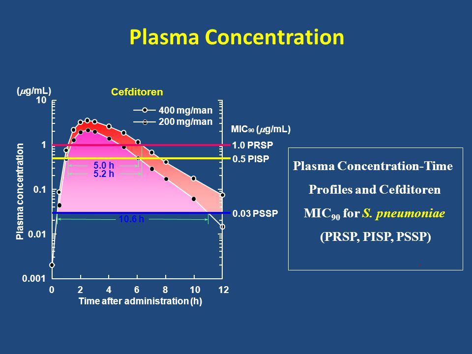 Plasma Concentration-Time Profiles and Cefditoren