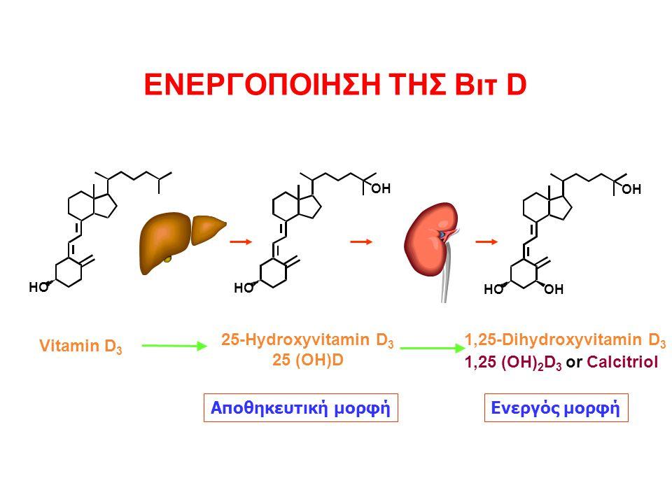25-Hydroxyvitamin D3 25 (OH)D