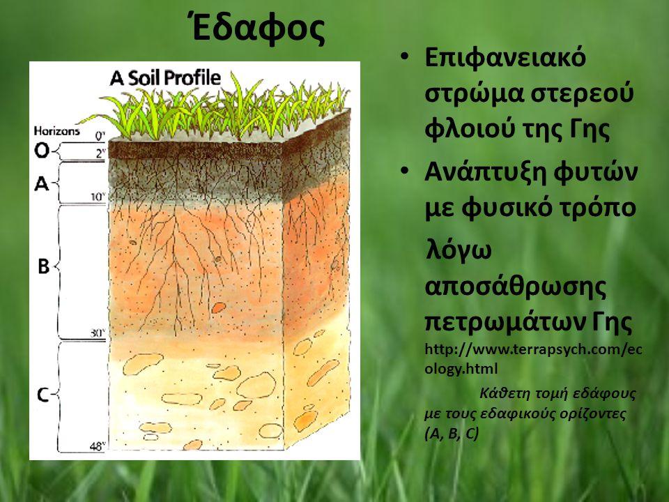 Έδαφος Επιφανειακό στρώμα στερεού φλοιού της Γης