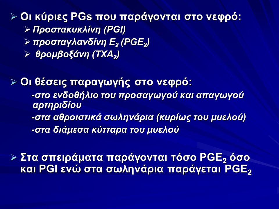 Οι κύριες PGs που παράγονται στο νεφρό: