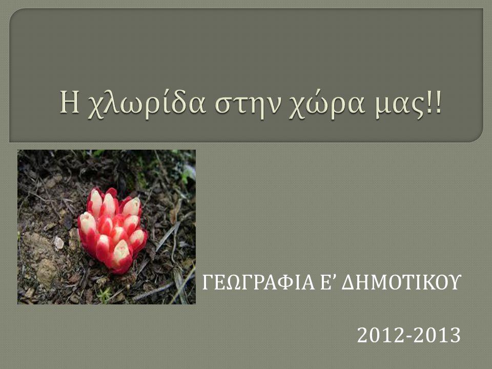 ΓΕΩΓΡΑΦΙΑ Ε' ΔΗΜΟΤΙΚΟΥ 2012-2013