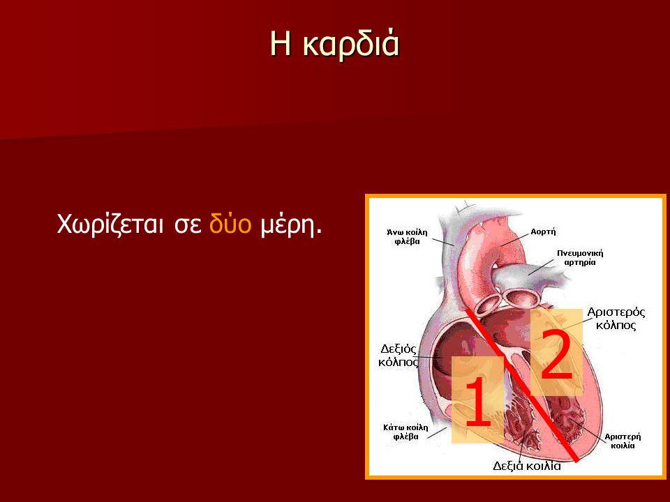 Η καρδιά Χωρίζεται σε δύο μέρη. 2 1