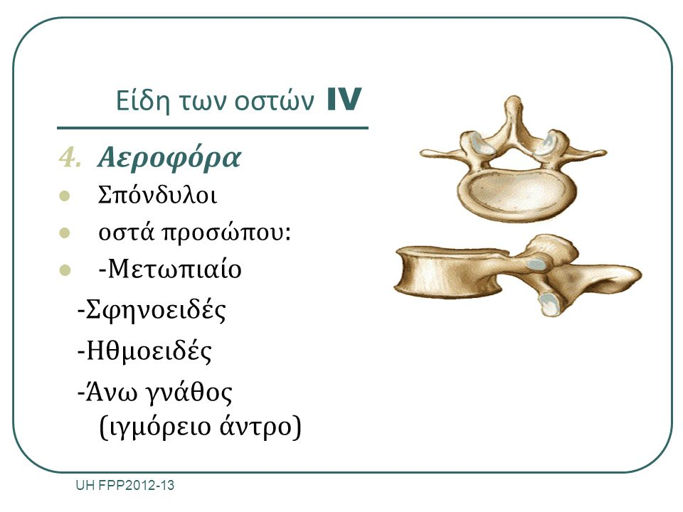 Είδη των οστών IV Aεροφόρα -Μετωπιαίο -Σφηνοειδές -Ηθμοειδές