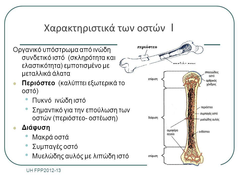 Χαρακτηριστικά των οστών Ι