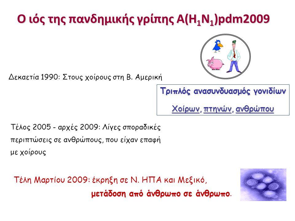 Ο ιός της πανδημικής γρίπης Α(Η1Ν1)pdm2009