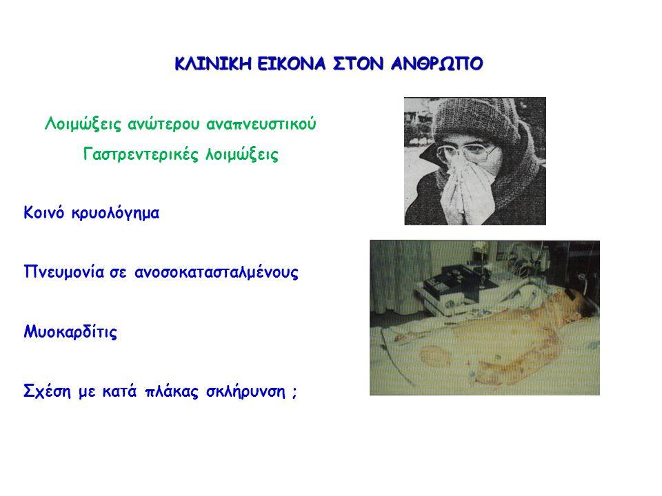 ΚΛΙΝΙΚΗ ΕΙΚΟΝΑ ΣΤΟΝ ΑΝΘΡΩΠΟ