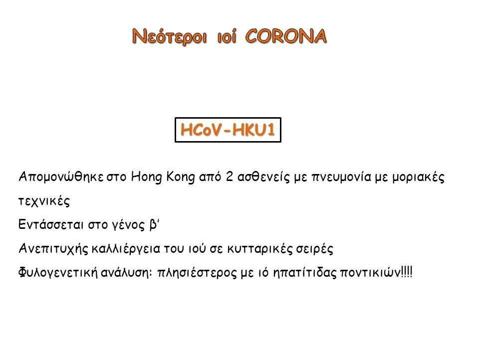 Νεότεροι ιοί CORONA HCoV-HKU1