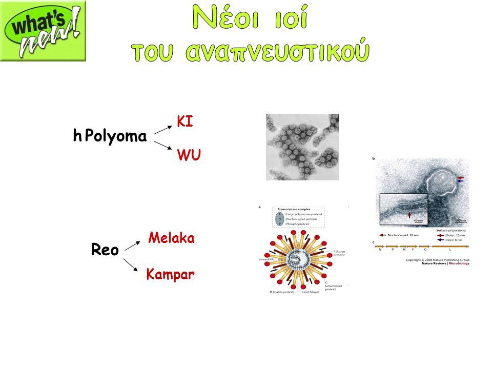 Νέοι ιοί του αναπνευστικού