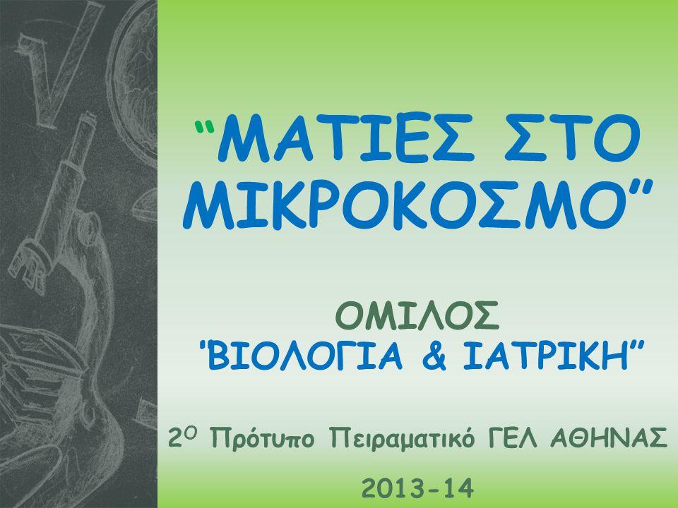 ΜΑΤΙΕΣ ΣΤΟ ΜΙΚΡΟΚΟΣΜΟ ΟΜΙΛΟΣ ΒΙΟΛΟΓΙΑ & ΙΑΤΡΙΚΗ