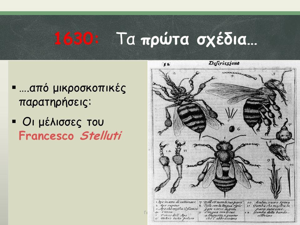 1630: Τα πρώτα σχέδια… ….από μικροσκοπικές παρατηρήσεις: