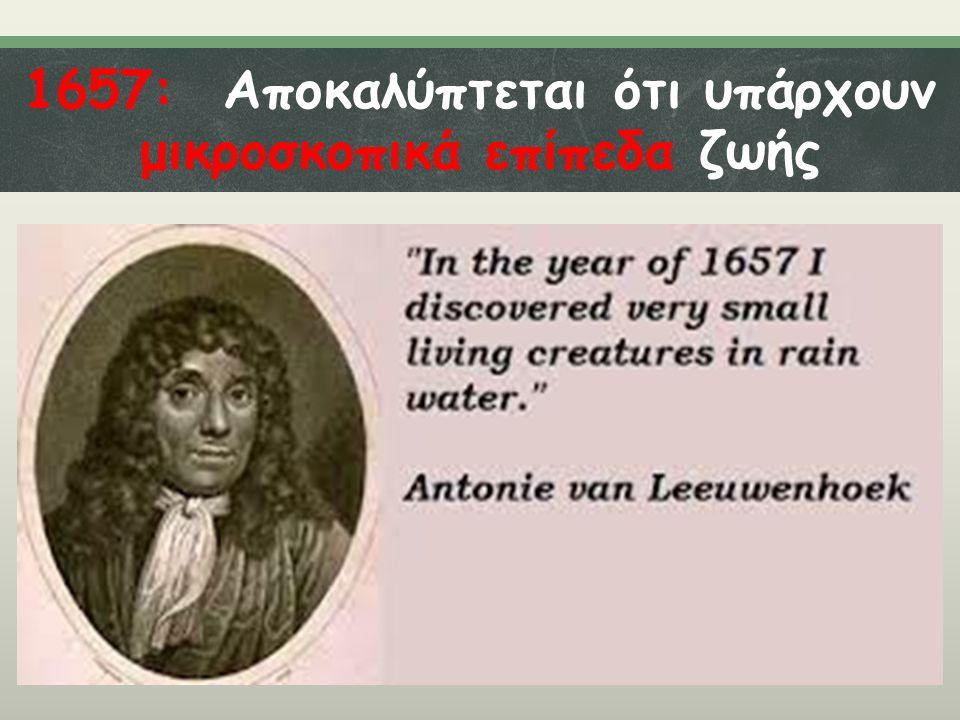 1657: Αποκαλύπτεται ότι υπάρχουν μικροσκοπικά επίπεδα ζωής