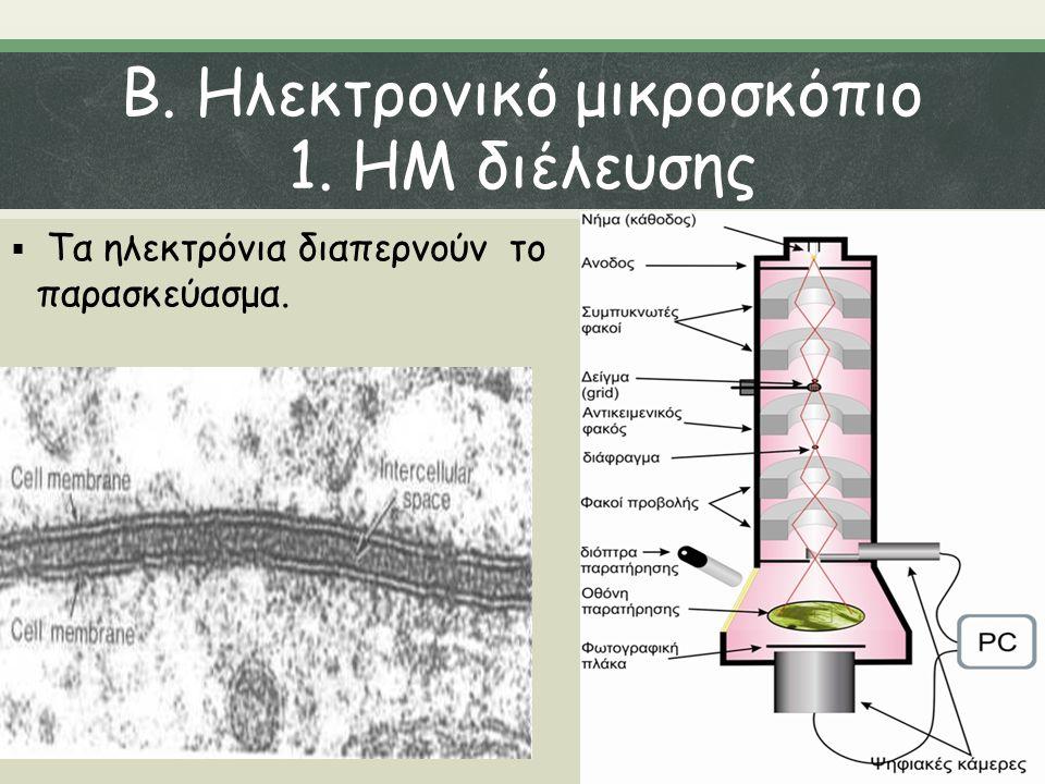 Β. Ηλεκτρονικό μικροσκόπιο 1. ΗΜ διέλευσης