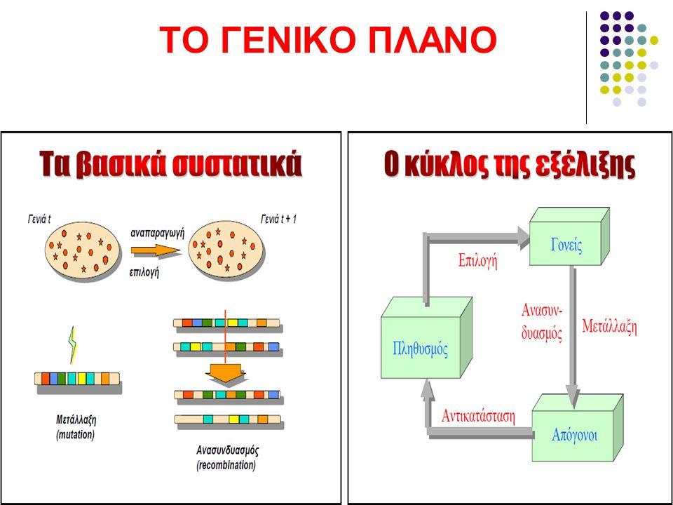 ΤΟ ΓΕΝΙΚΟ ΠΛΑΝΟ