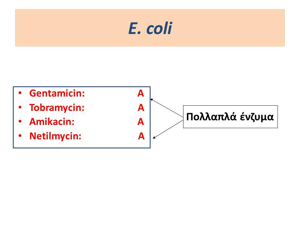 Ε. coli Πολλαπλά ένζυμα Gentamicin: A Tobramycin: Α Amikacin: A
