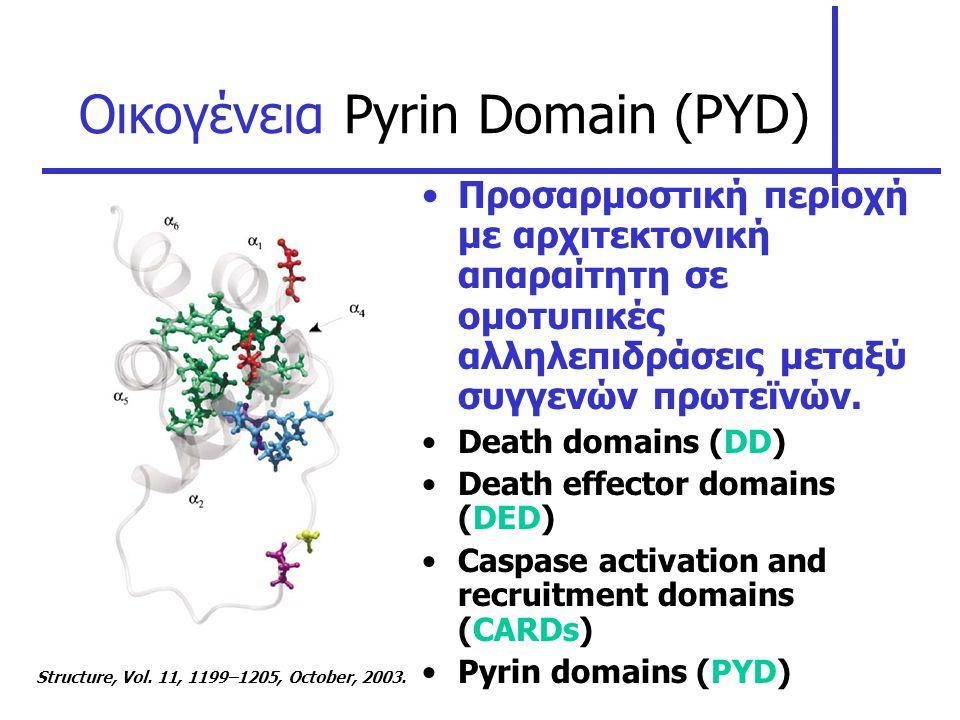 Οικογένεια Pyrin Domain (PYD)