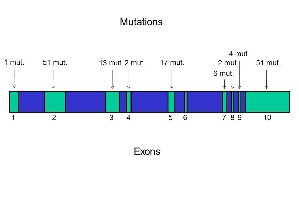 Mutations Exons 1 mut. 51 mut. 13 mut. 17 mut. 2 mut. 6 mut. 4 mut.
