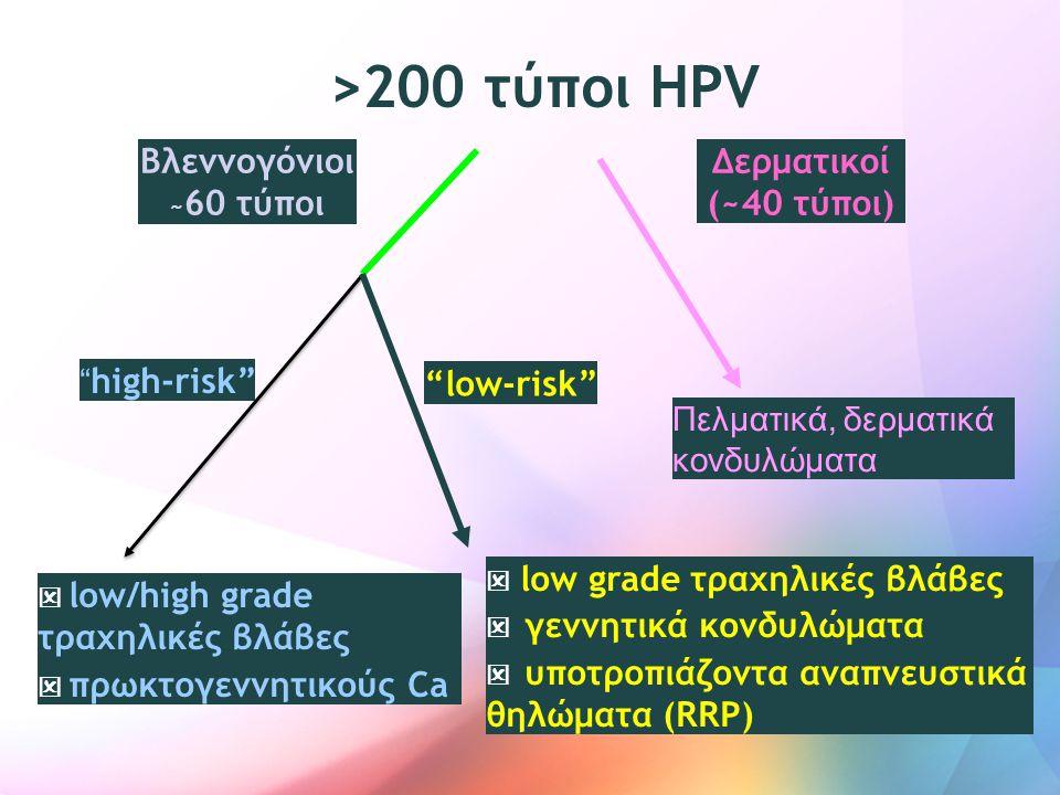 >200 τύποι HPV Βλεννογόνιοι Δερματικοί (~40 τύποι) low-risk