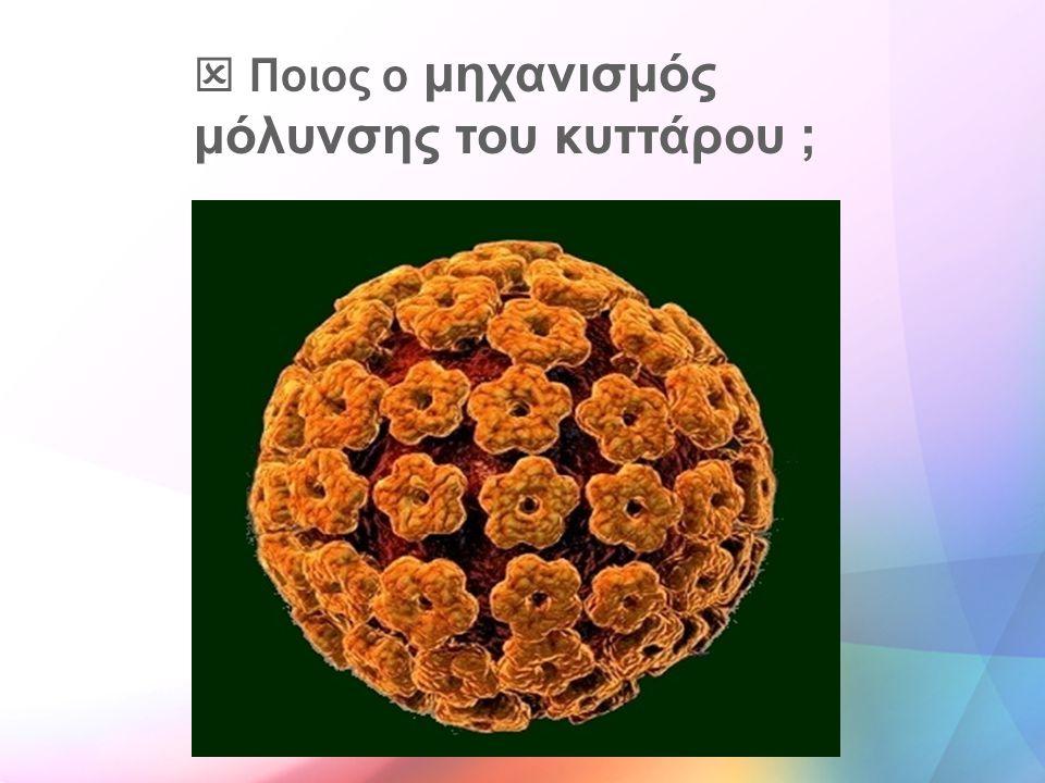  Ποιος ο μηχανισμός μόλυνσης του κυττάρου ;