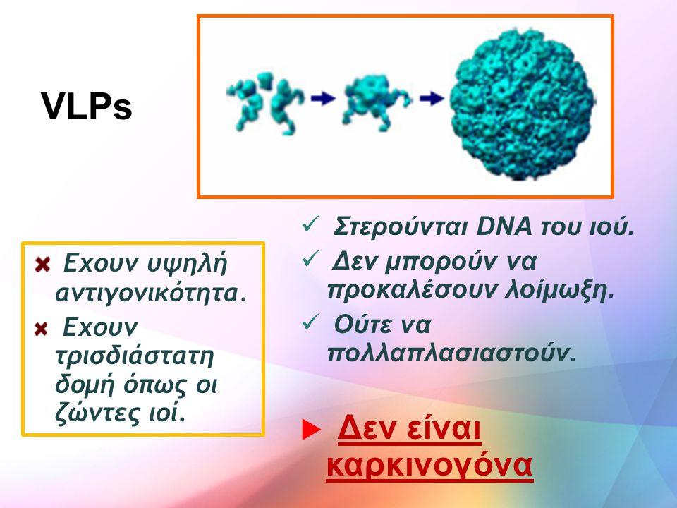 VLPs Εχουν υψηλή αντιγονικότητα. Στερούνται DNA του ιού.