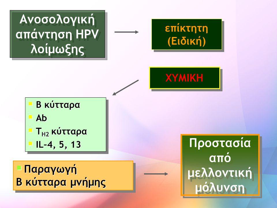 Ανοσολογική απάντηση HPV λοίμωξης Προστασία από μελλοντική μόλυνση