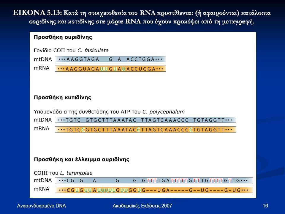 ΕΙΚΟΝΑ 5.13: Κατά τη στοιχειοθεσία του RNA προστίθενται (ή αφαιρούνται) κατάλοιπα ουριδίνης και κυτιδίνης στα μόρια RNA που έχουν προκύψει από τη μεταγραφή.
