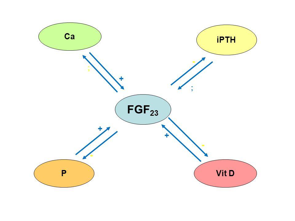 Ca iPTH - ; + ; FGF23 + + - - P Vit D