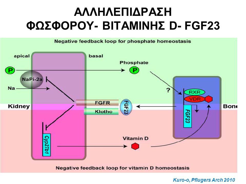 ΑΛΛΗΛΕΠΙΔΡΑΣΗ ΦΩΣΦΟΡΟΥ- ΒΙΤΑΜΙΝΗΣ D- FGF23