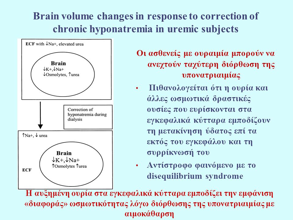Brain volume changes in response to correction of chronic hyponatremia in uremic subjects