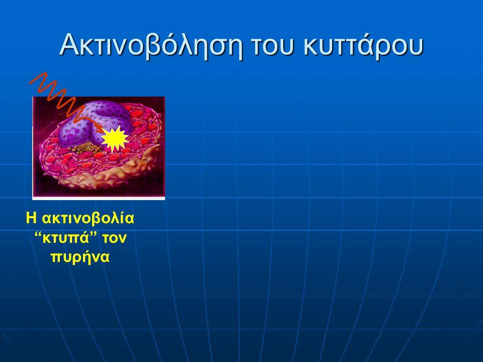 Ακτινοβόληση του κυττάρου