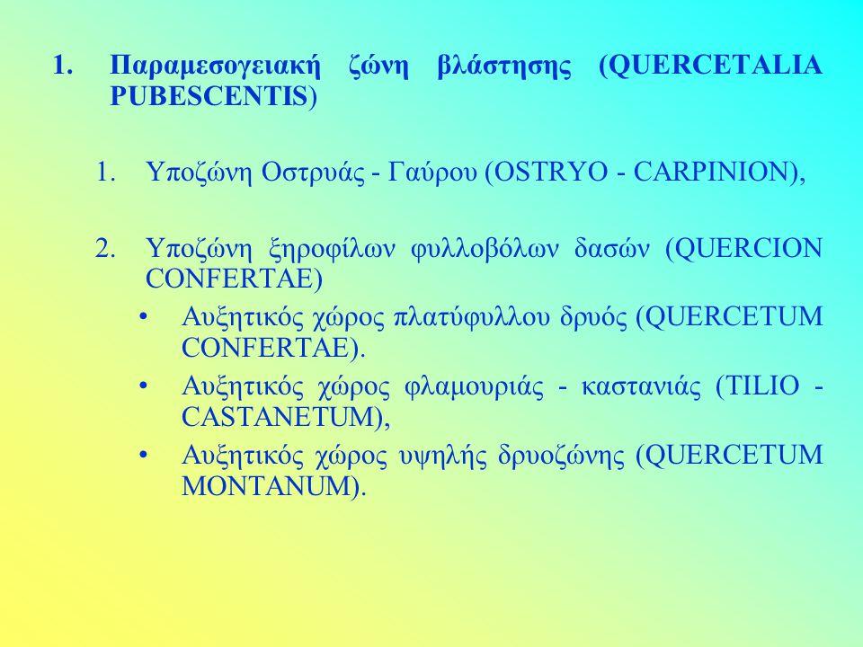 Παραμεσογειακή ζώνη βλάστησης (QUERCETALIA PUBESCENTIS)