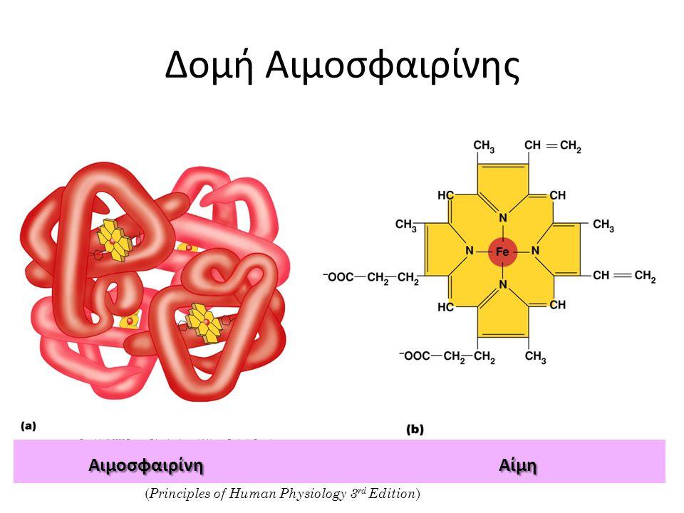 Δομή Αιμοσφαιρίνης Αιμοσφαιρίνη Αίμη