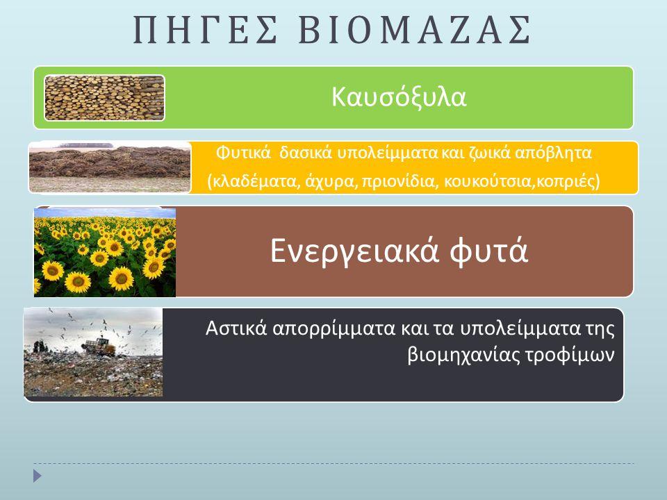 ΠΗΓΕΣ ΒΙΟΜΑΖΑΣ Ενεργειακά φυτά Καυσόξυλα