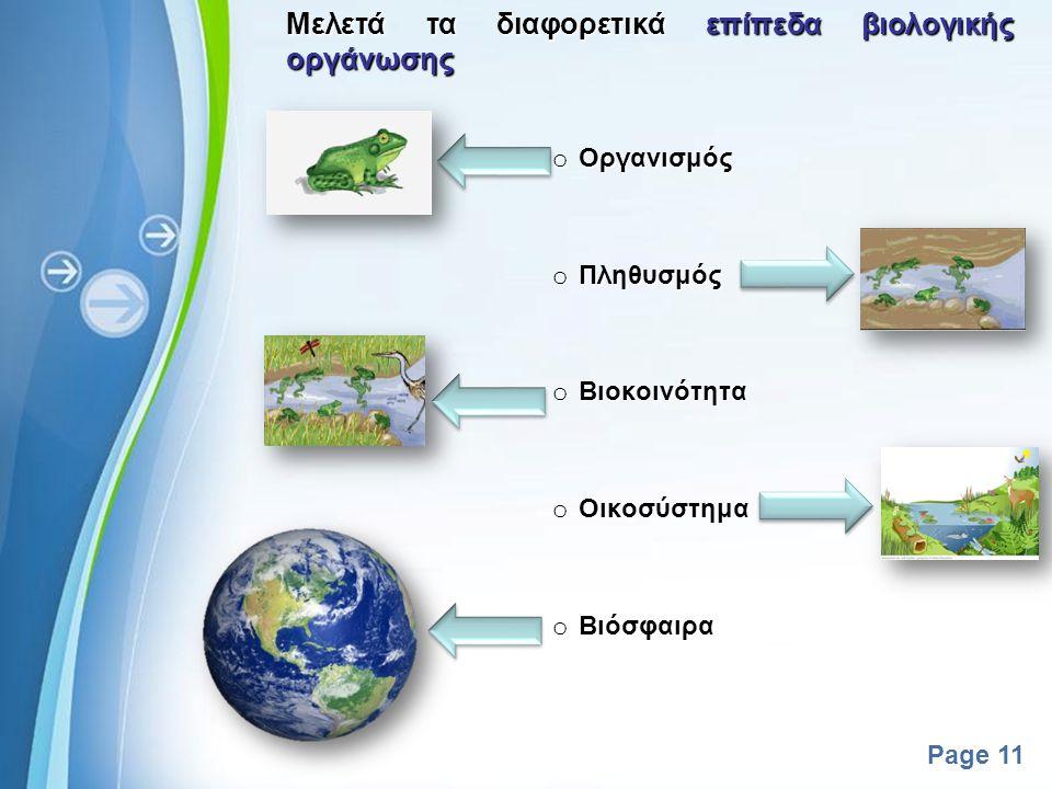 Μελετά τα διαφορετικά επίπεδα βιολογικής οργάνωσης