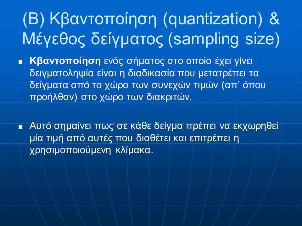 (B) Κβαντοποίηση (quantization) & Μέγεθος δείγματος (sampling size)